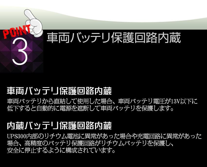 UPS300_06.jpg