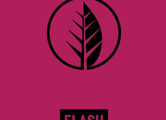 Deciduous Double Flash (Fruited Sour Ale - 4 Pack x 16 oz.)