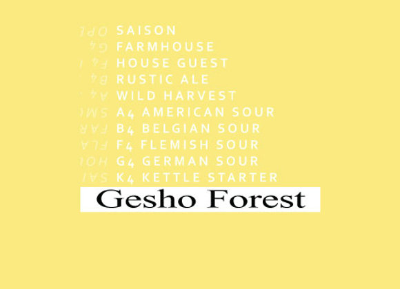 BlackMan Gesho Forest 2019  (Saison - Single x 12.7 oz.)