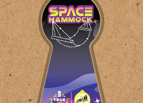True Respite Space Hammock (Hazy IPA - 4 Pack x 16 oz.) (MD)