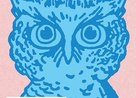 Bluejacket Blue Owl (Barrel-Aged Berliner Weisse - Single x 16.9 oz.)
