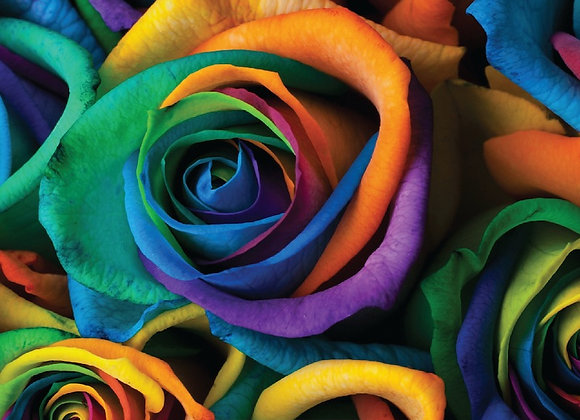 Bluejacket The Rainbow (Double IPA - 4 Pack x 16 oz.)