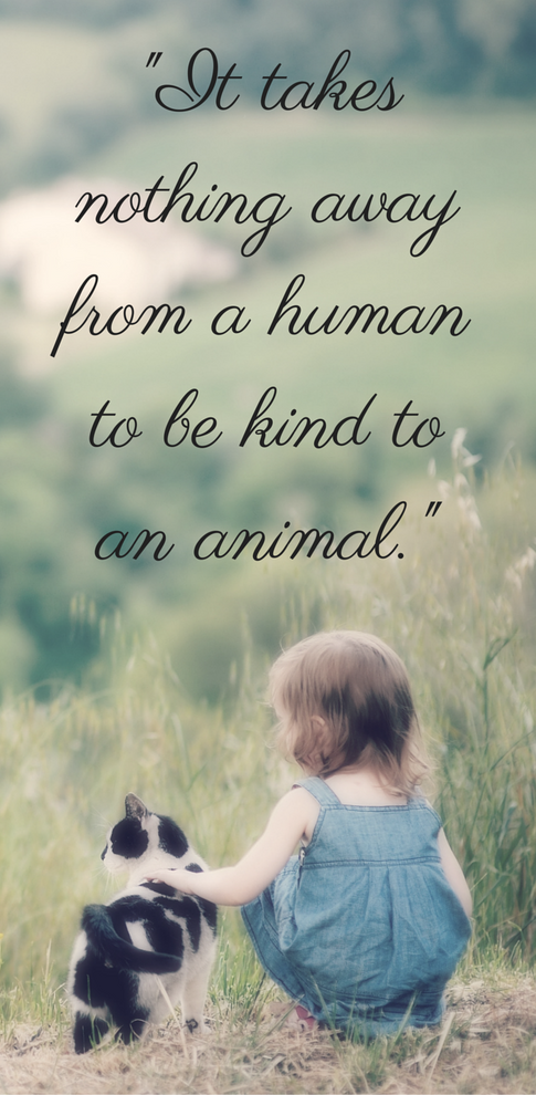 animal quote 4.png