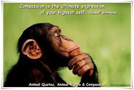 animal quote 10.jpeg