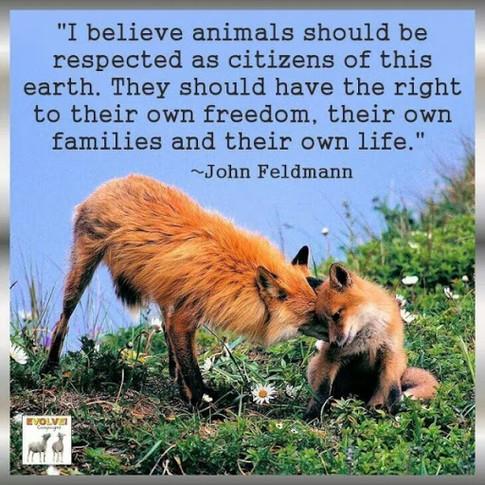 animal quote 16.jpg