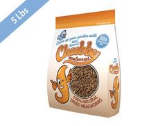 Chubby Dried Worms.jpg