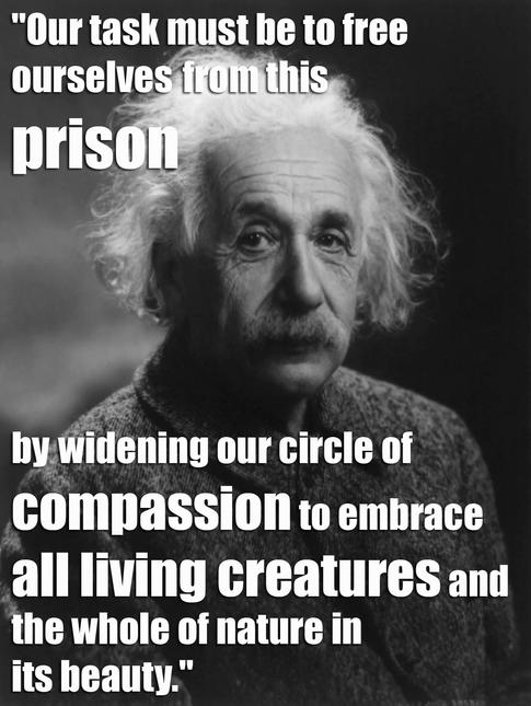animal quote 15.webp
