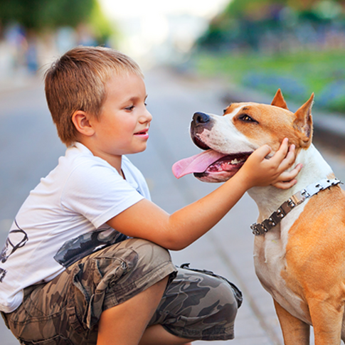 15 Amazing Stories of True Animal Heroes Saving People from Certain Death