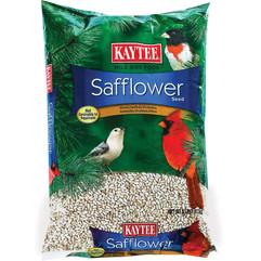 Kaytee Safflower Seed.jpg