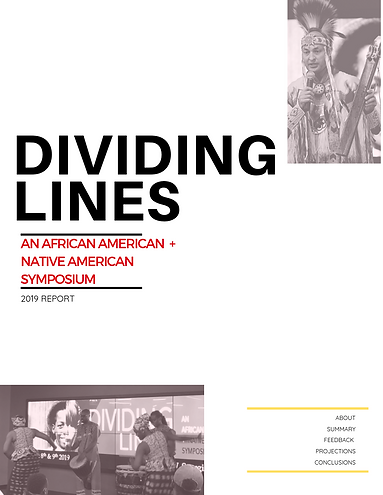 Dividing Lines An African American + Nat