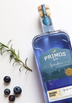 primos blue.jpg