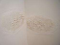 Wall Lumps & Floor Bump