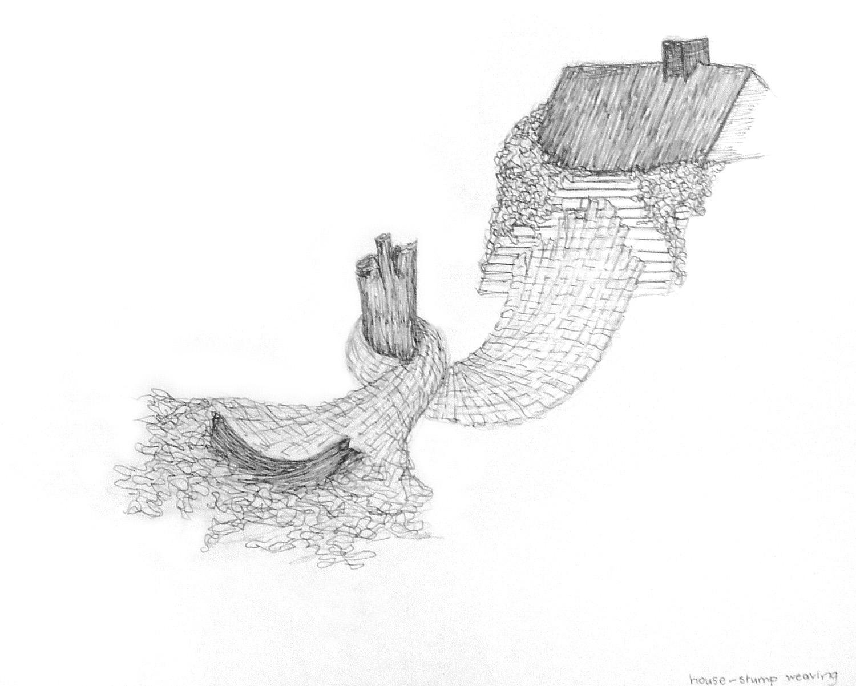 Shed Sketch