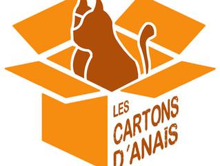 Nouvelle année, nouveau logo