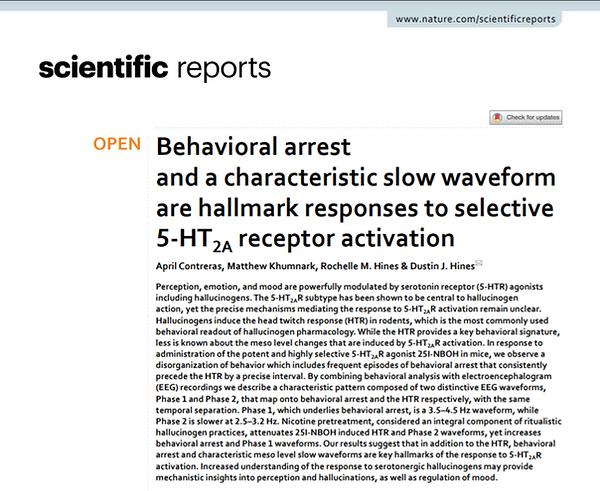 Behavioral Arrest 25I paper Screenshot.p