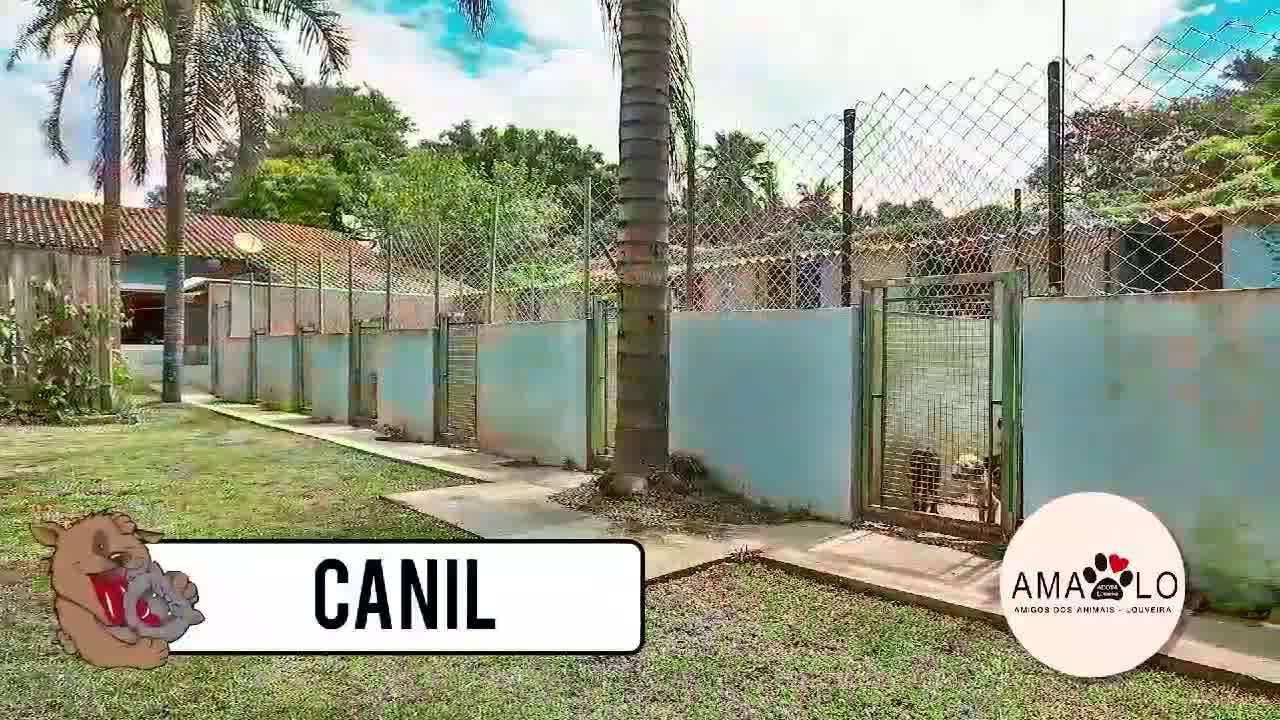 Conheça a AMALO !!  Créditos: Luiz Celso Freitas Fotógrafo Cerficado Google Street View Fone 19 9 7403 3626  www.virtualdrone.com.br