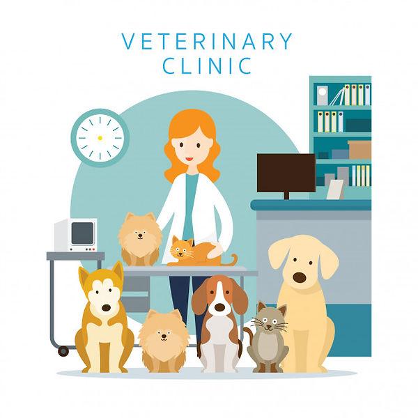 veterinaria-com-animais-de-estimacao-gat