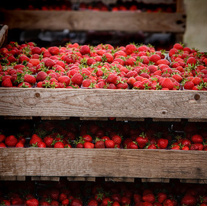 boxes-of-strawberries.jpg