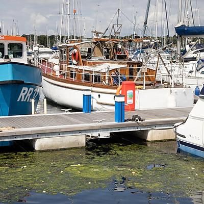 Chatham MDL Marina cleanup