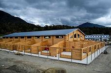 13-2014-09-07 School NZ.jpg