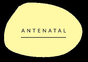 RR_WEBSITE_GRAPHICS-ANTENATAL.png