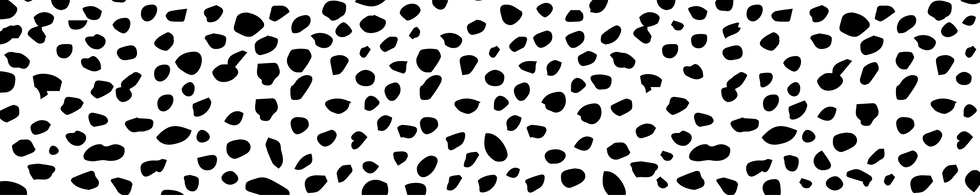 RR_A5 FLYER_black dots-22.png
