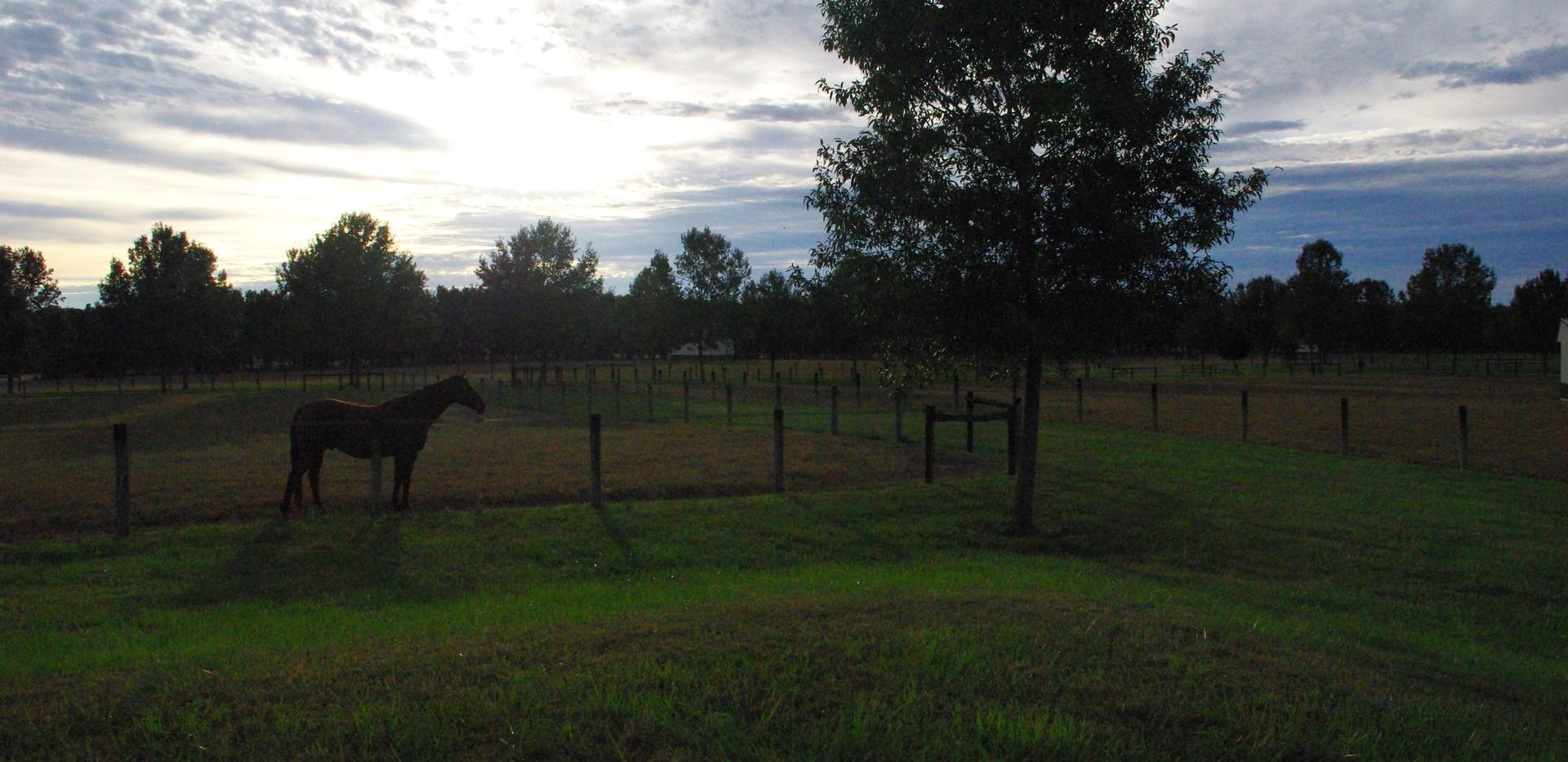 Morning View at KVC