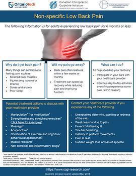 CCGI_low back pain_patient handout.jpg