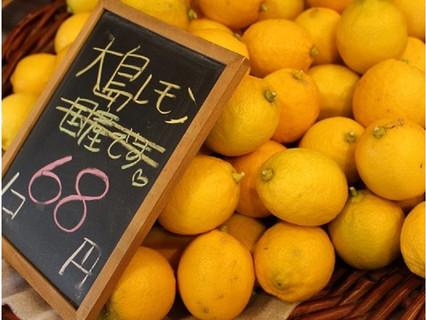 大島レモン