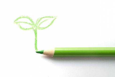 鉛筆と葉っぱ