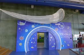 水族館企画展