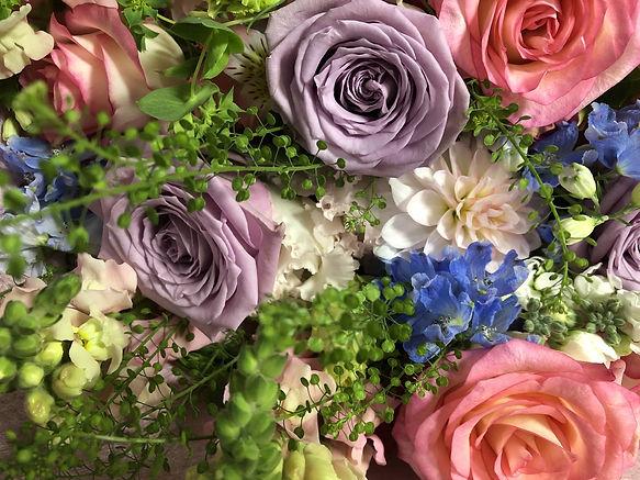 紫や青色の花