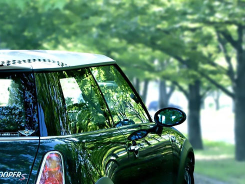 森林の中の車