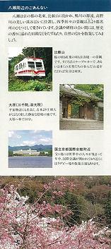 養福寺会館近くの桜
