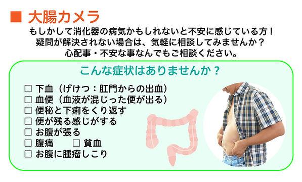 大腸カメラの説明