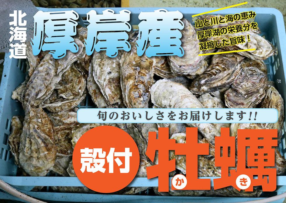 牡蠣チラシ