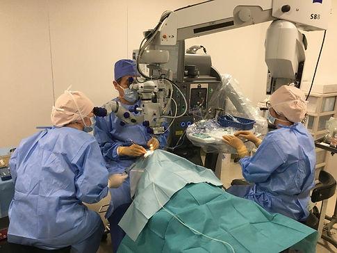 眼の手術中