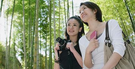 竹藪を散策する女性たち