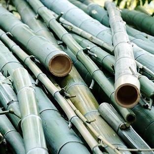 竹の「半炭化ペレット」を実現!