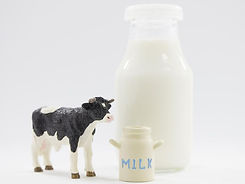 牛乳と牛のおもちゃ