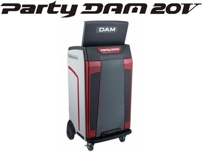 PARTY DAM
