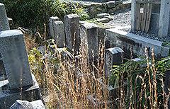 お墓の引越1