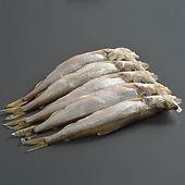 干し子持きゅうり魚