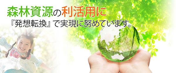 森林資源の利活用