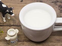 カップに入った牛乳