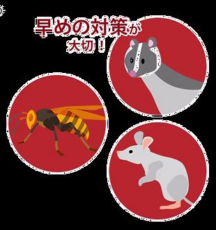 ハチ・ハクビシン・ネズミのイラスト