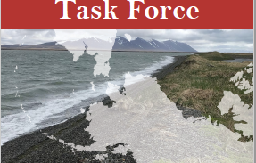 Arctic Shield - Sector Anchorage MSTF Final Report