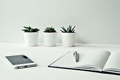 Desk with cactus.jpg