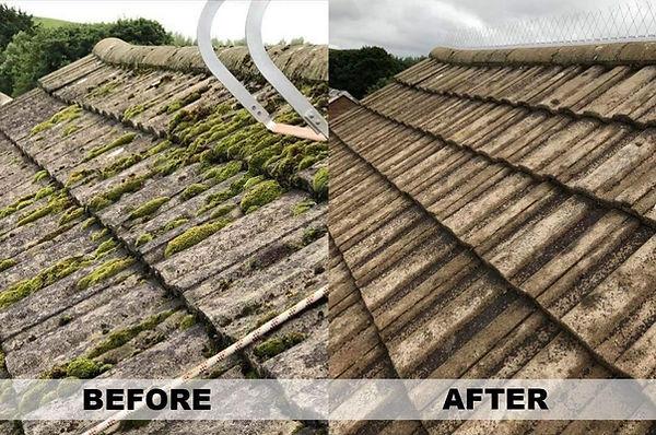 roof cleaner soft washing bridgend