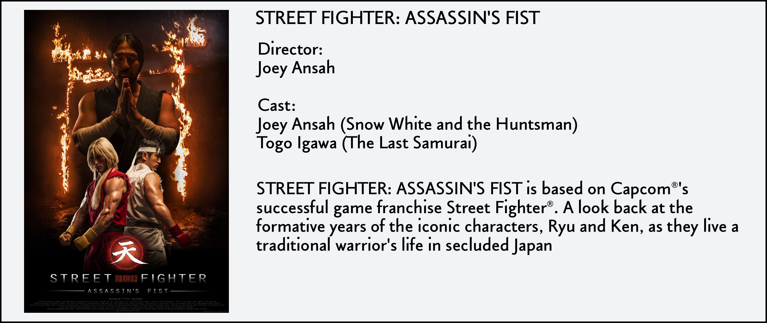 Street Fighter- Assassin's Fist